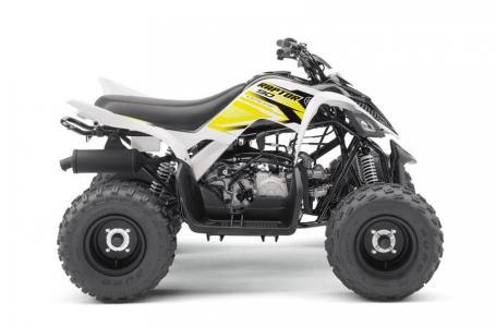 2017 Yamaha RAPTOR 90 6