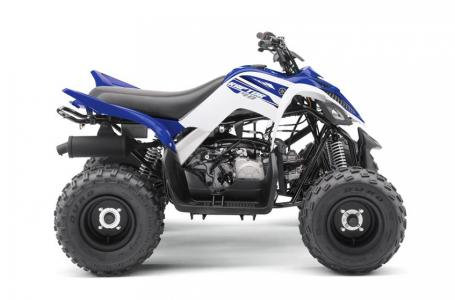 2017 Yamaha RAPTOR 90 for sale 73028
