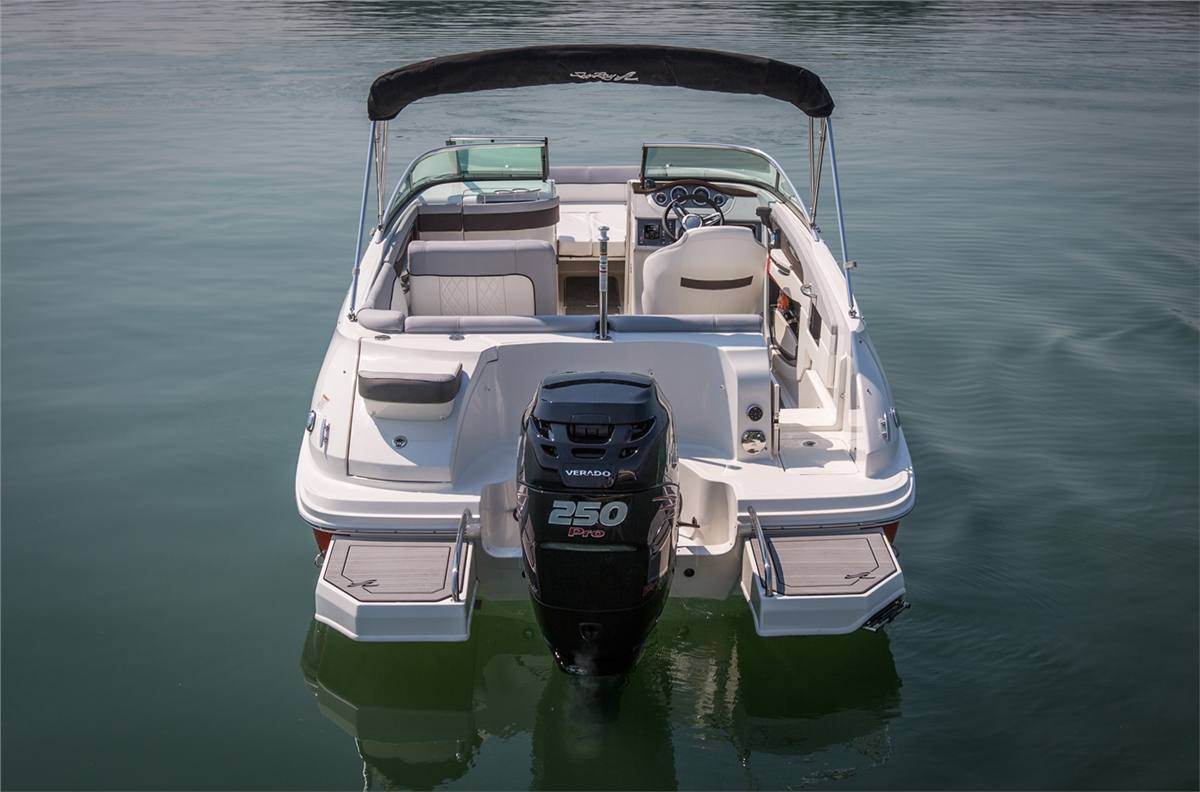 2017 Sea Ray SDX 240 Outboard for sale in St  Clair Shores
