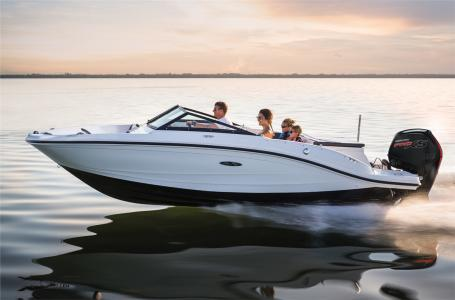 2017 SEA RAY SPX 190 OUTBOARD for sale