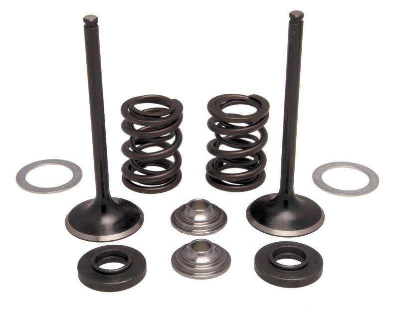 Intake Only Stainless Conversion Valve/Spring Kit