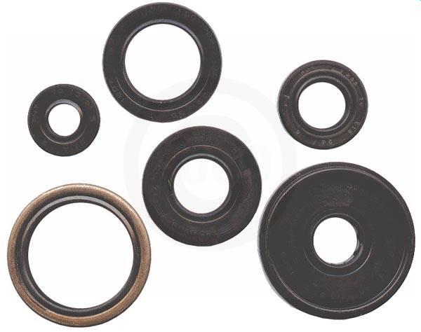 822307 Winderosa 822307 oil seal set