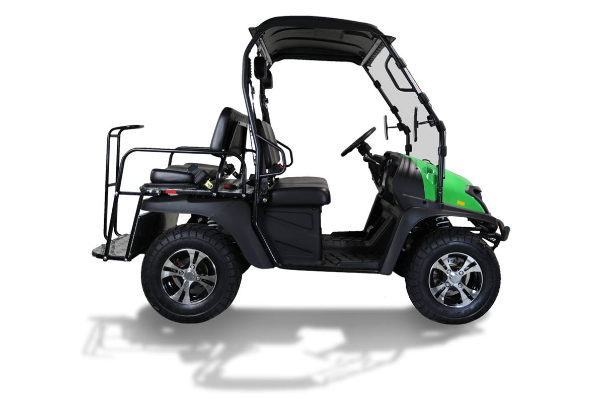 2018 Massimo Motor BUCK 200X