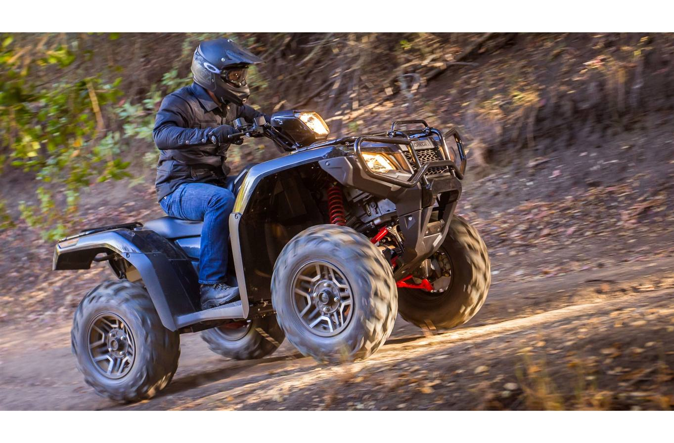 2019 Honda Rubicon 500 Dct Deluxe For Sale In Kelowna Bc Fuel Filter Gray Metallic