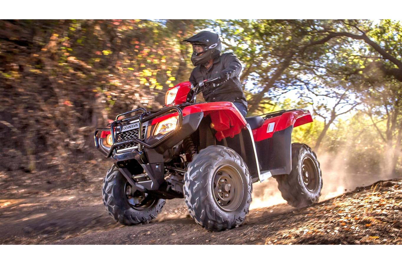 2019 Honda Rubicon 500 Irs Eps For Sale In Kelowna Bc Fuel Filter Red