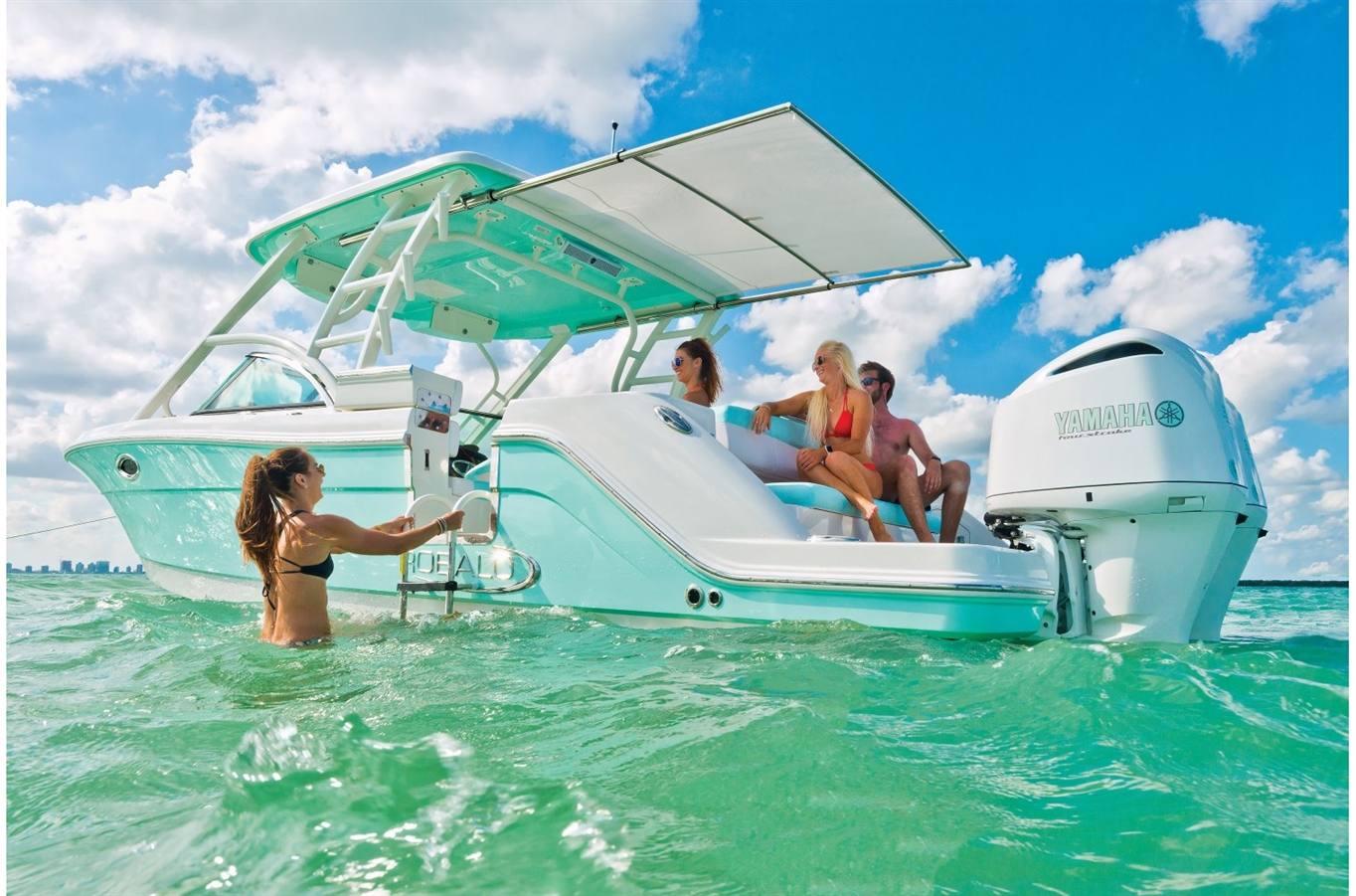 2019 Robalo R317 for sale in Kailua, HI  Windward Boats