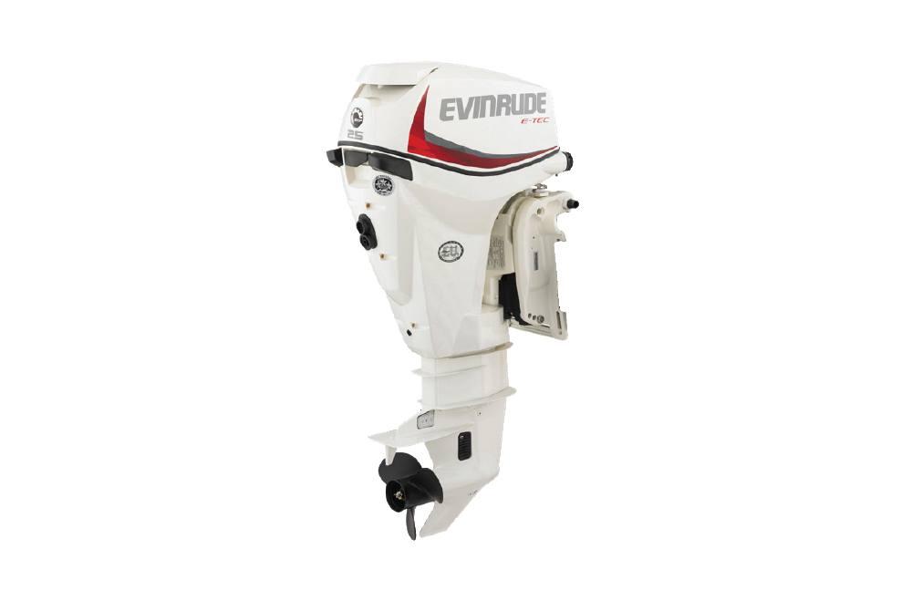 2020 Evinrude 25 HP - E25DRSL