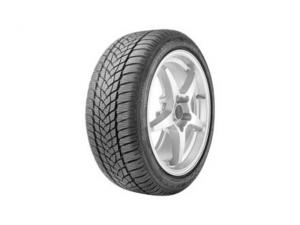 Ultra Grip Performance 2 Tire