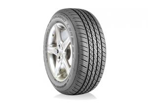Avenger Touring LSR (W-Rated) Tire