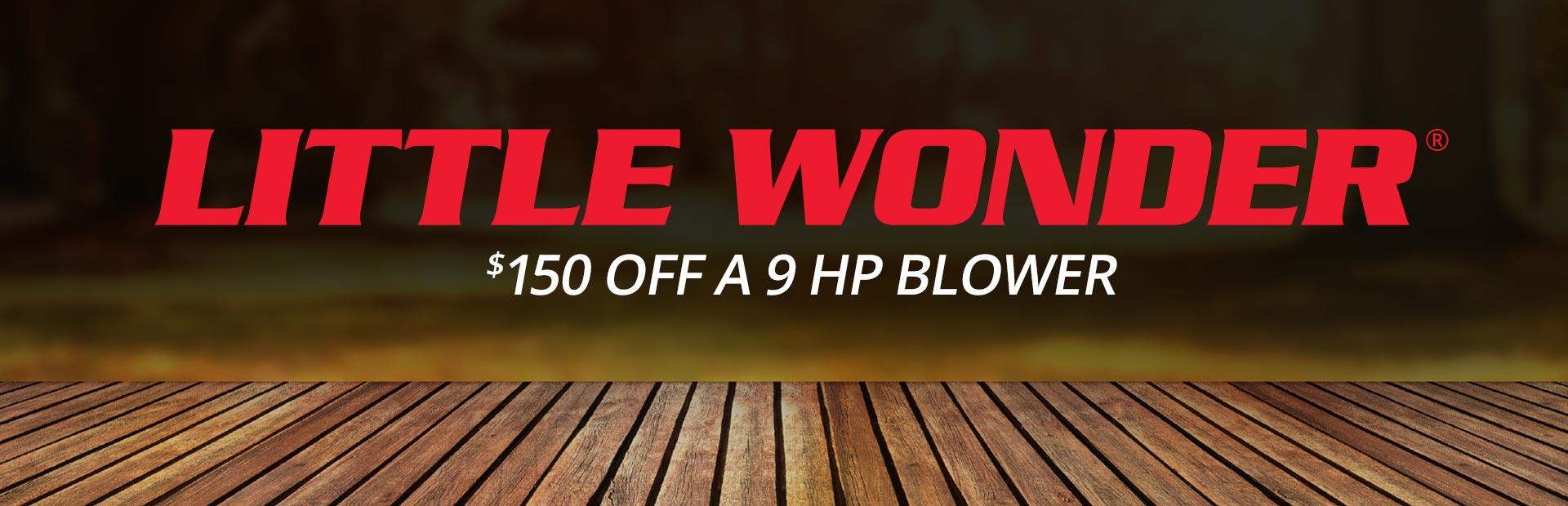 $150 Off A 9 HP Blower