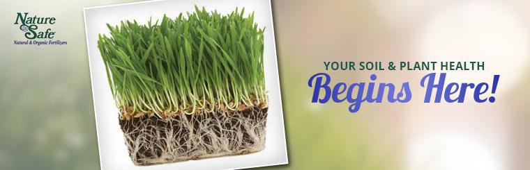 Your soil and plant health begins here! Click here for details.