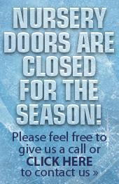 Nursery Doors are closed for the season! Please feel free to give us a call or click here to contact us.
