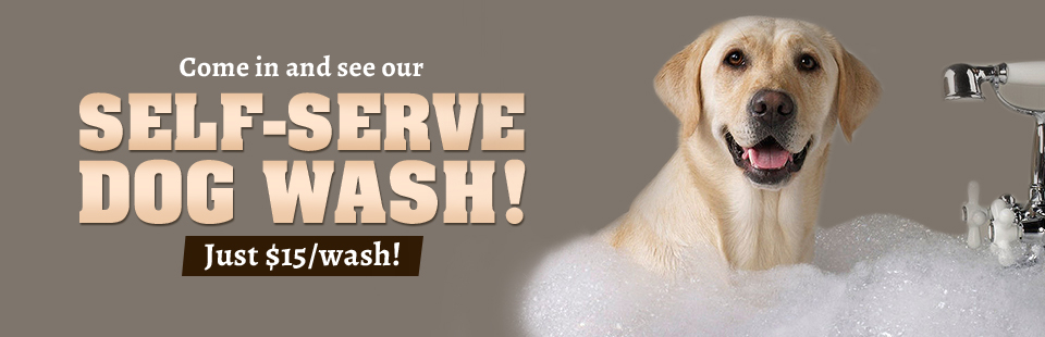 Come in and see our self-serve dog wash!