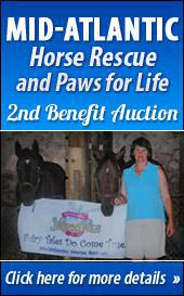 Mid-Atlantic Horse Rescue and Paws for Life 2nd Benefit Auction