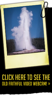 Click here to see the Old Faithful webcam!