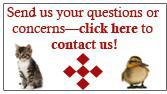 Send us your questions of concerns—click here to contact us!