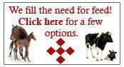 We fill the need for feed! Click here for a few options.
