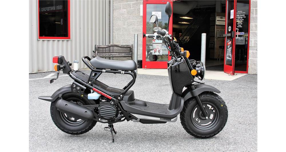 Honda Ruckus For Sale