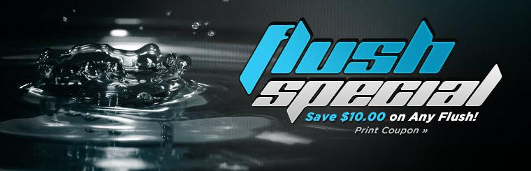Flush Special: Save $10.00 on any flush! Click here to print the coupon.