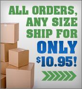 All Orders, Any Size Ship for Only $10.95!