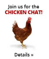 Join us for the Chicken Chat! Details.