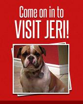Come on in to Visit Jeri!