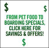 From pet food to boarding specials, click here for savings and offers!
