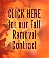 Click here for our Fall Removal Contract