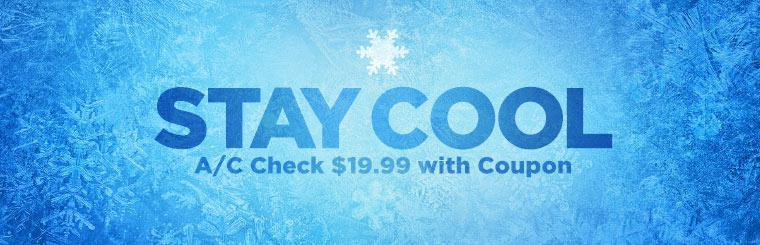 Click here for a coupon to receive an A/C check for just $19.99.
