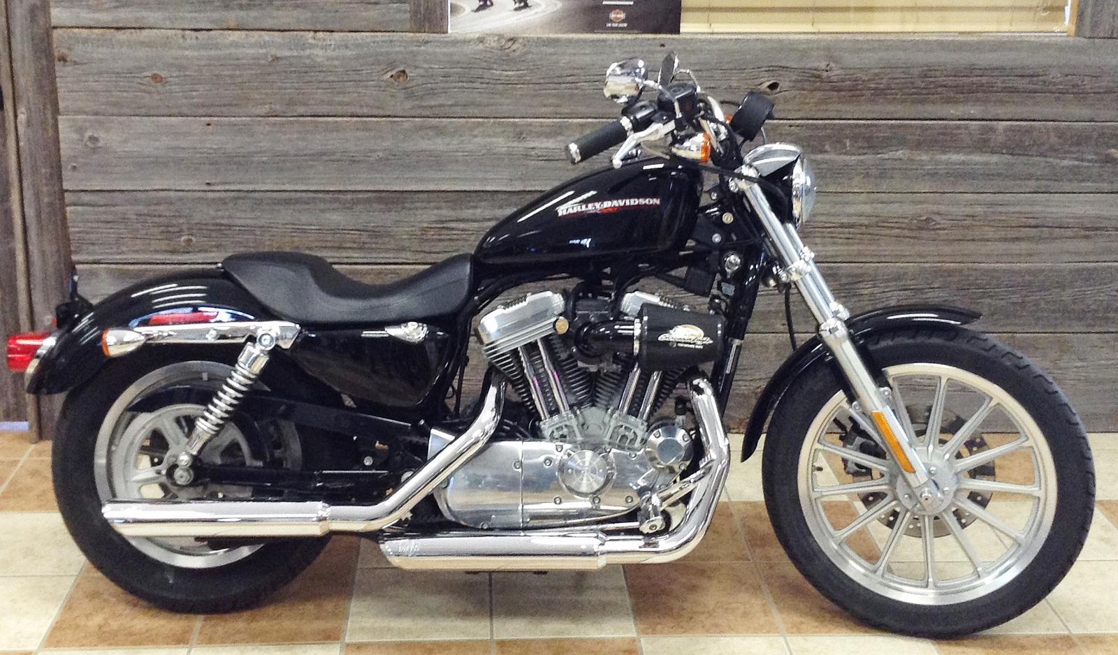 2005 Harley Davidson >> 2005 Harley Davidson Xl883l Superlow Color Option