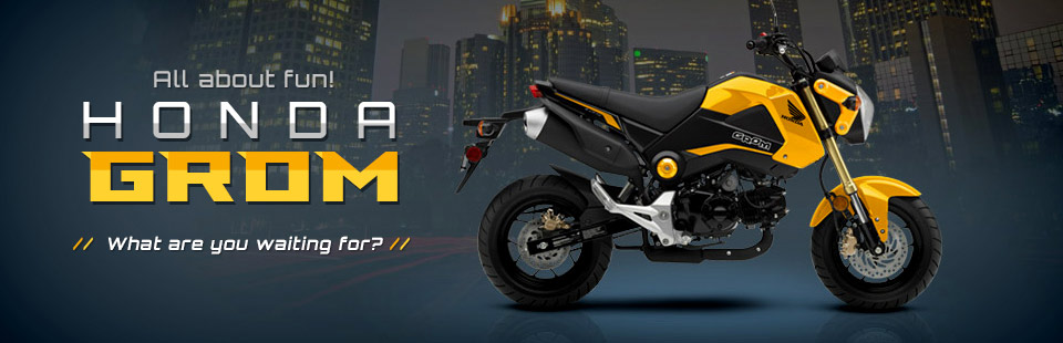 Honda Grom: Click here to view the model.