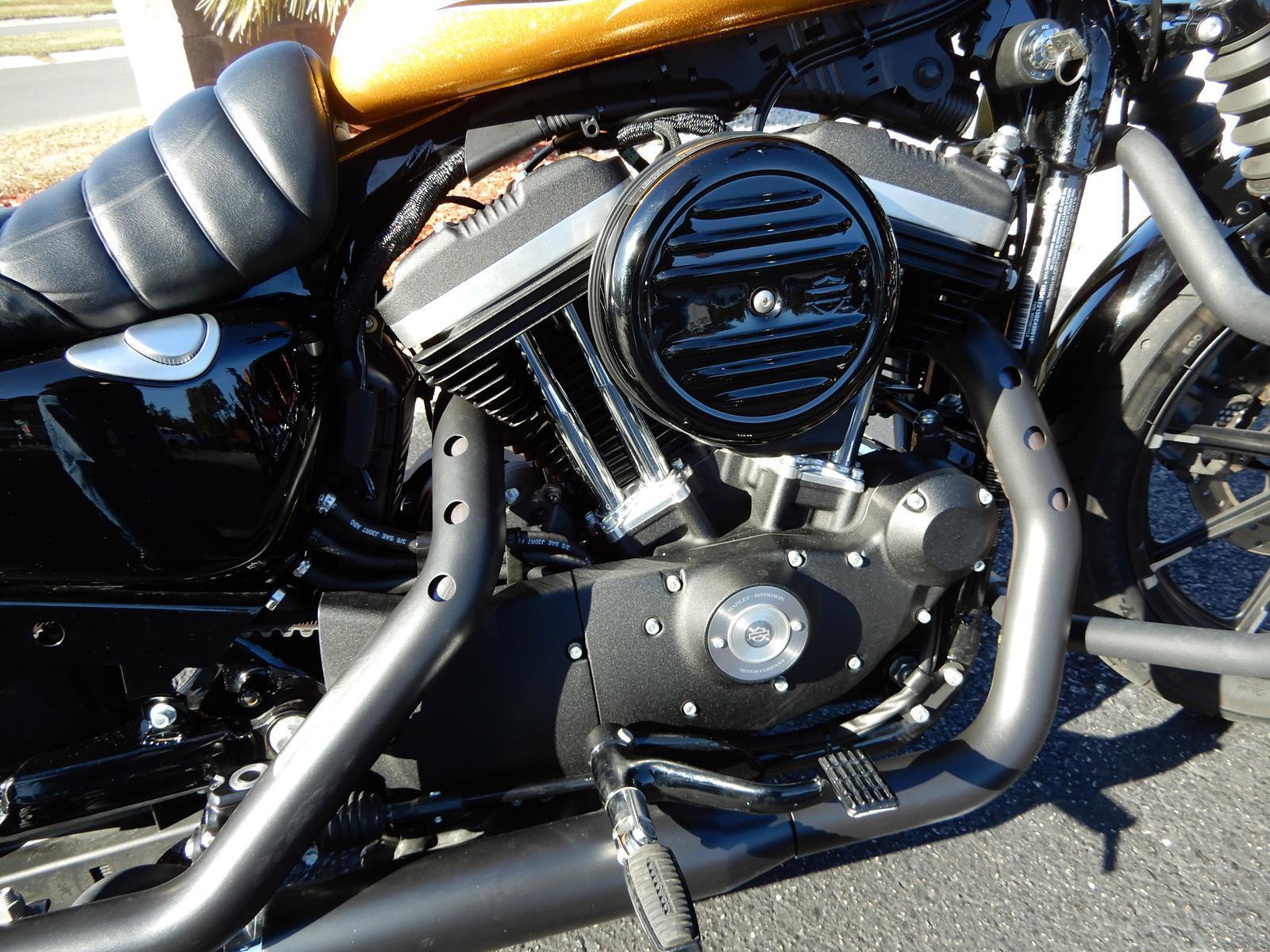 2016 Harley Davidson Sportster Iron 883 For Sale In Myrtle Beach Wire Harness A 73 Ironhead Dscn4289