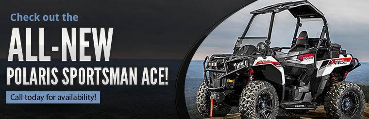 2014 Polaris ACE