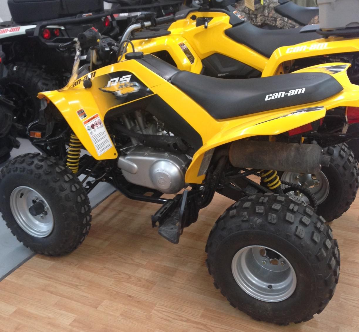 2017 Can-Am ATV Ds 250®