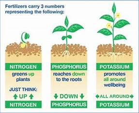 Fertilizers Tubbs Hardware & Rental