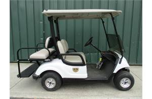 DRIVE G29A (GAS) GOLF CART CUSTOM BUILT MANY EXTRAS.