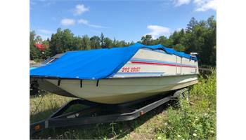 1993 230 Deck Boat w/Johnson 225 hp & Tandem Trailer