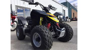 2018 QuadSport Z90
