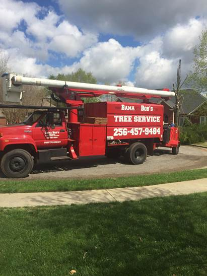 Bucket truck for Tree removal and trimming