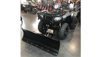 2019 Rubicon 500 DCT IRS EPS with Winch, Plow & Heated Grips! - TRX500FA6S