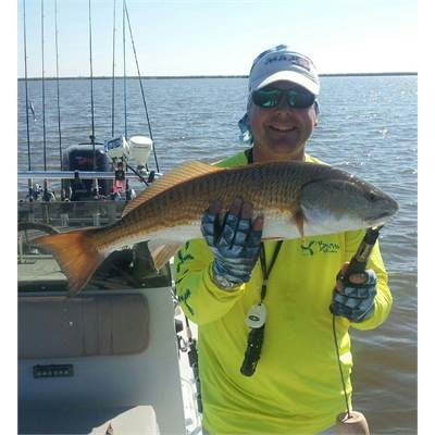 Darin Johnson - Sales Manager