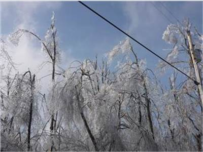 2009 Kentucky Ice Storm Cleanup