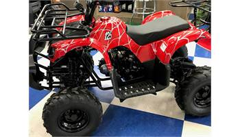 2019 D125 Youth Utility ATV - FREE HELMET
