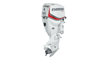 E150DPXAB Two Stroke