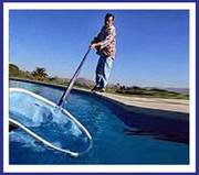 Trouble-Free Pool Service