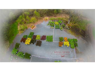 Nursery Aerial Photos By DronezWork