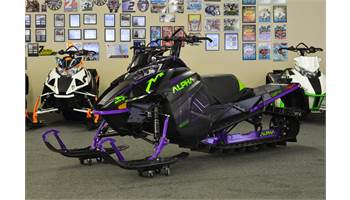 2019 M 8000 Mountain Cat Alpha One (154) Purple
