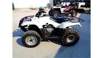 2009 FourTrax Recon