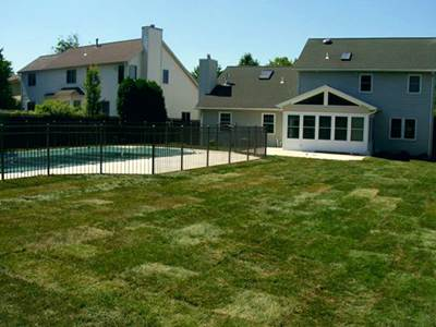 Backyard with pool after