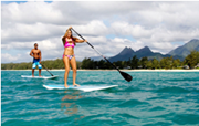 NSP paddle boards